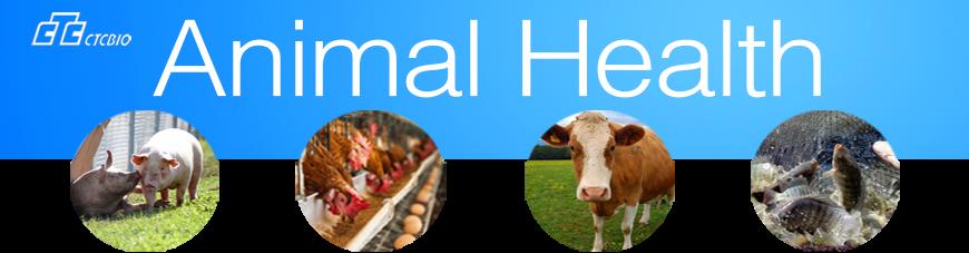 animal-healthnew